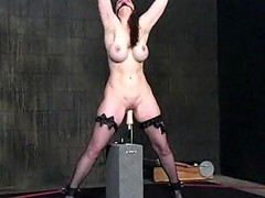 Bdsm Bondage Machine