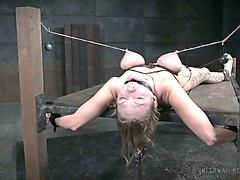 hardcore bondage for busty white lady on the wooden board